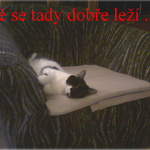 miroslava_gabrianova_horovice.jpg