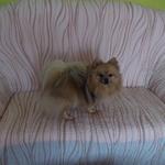 dana_onderkova_rudoltice_2.jpg
