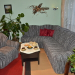 jana_panikova_ostrava-belsky_les.jpg