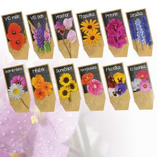 Sadba květin 6 druhů