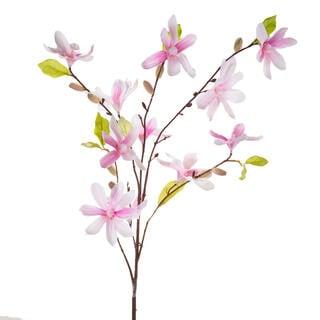 Magnolie větvička sv. růžová
