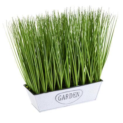 Okrasná tráva v truhlíku