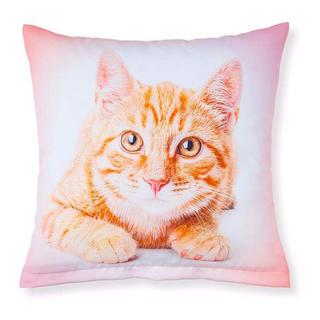 Dekorativní povlak na polštářek zrzavá kočka
