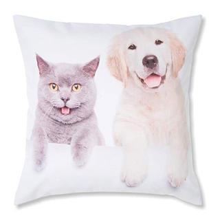 Dekorativní povlak na polštářek Retrívr a Modrá kočka