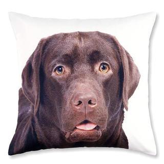 Dekorativní povlak na polštářek hnědý Labrador