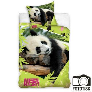 Dětské ložní povlečení Animal planet panda