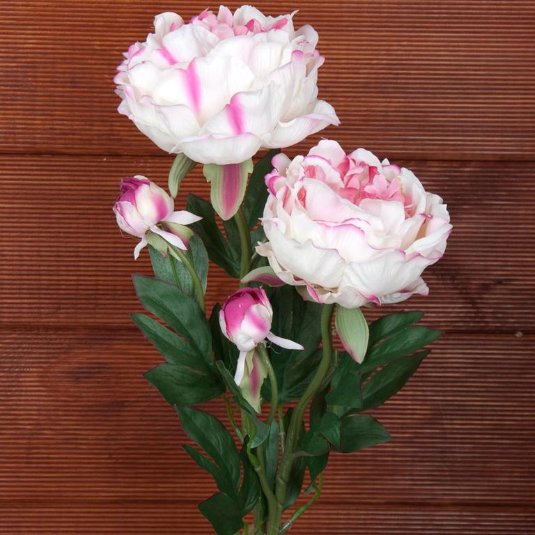 Umělé květiny – Pivoňky krémově-růžové
