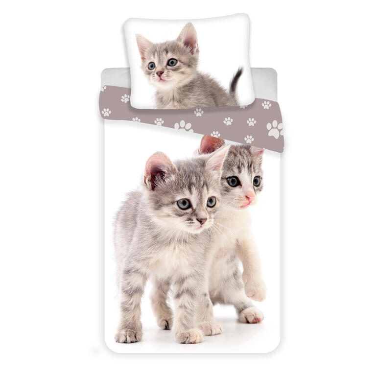 Jerry Fabrics Povlečení fototisk Kitten-kočka grey 140x200, 70x90 cm