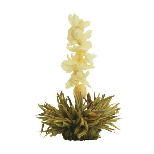 Kvetoucí čaj bílý - Jasmínový květ