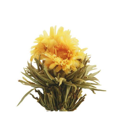 Kvetoucí čaj bílý - Slunovrat