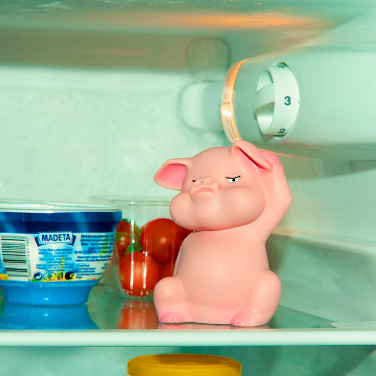 Prasátko do lednice  - 2