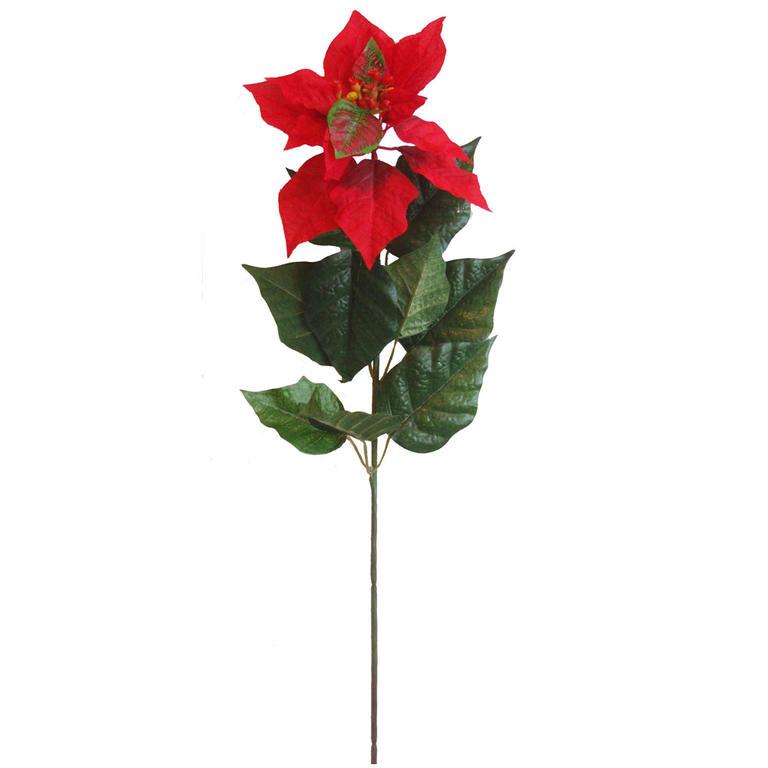 Vánoční hvězda (Poinsettia) 60 cm  - 2