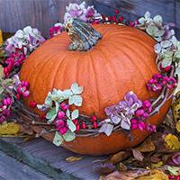 5 nápadů pro halloweenský večer