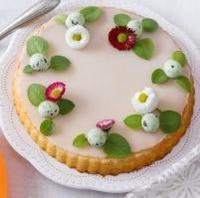 Jarní dort bez mouky